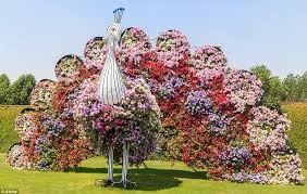 flowers for garden. Peacock Topiary Covered In An Array Of Colourful Flowers At The Largest Natural Flower Garden For