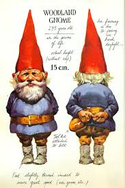 gnomes i love this book i m not in love with this book i just appreciate it d