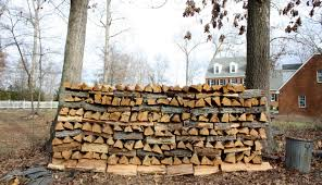 Best Firewood To Burn Chart The Best And Worst Trees For Firewood Hobby Farms