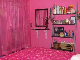 Hot Pink Bedroom Paint Bedroom Paint Color Ideas For Teenage Girl Bedroom Fascinating