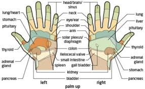 The Power Of Reflexology 1mhowto Com