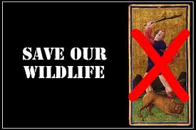 save our wildlife college essay cyber essays animals save wildlife save our wildlife essay on need to save wildlife