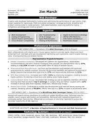 Resumes Web Developer Resume Sample Monster Com Webdeveloper Design