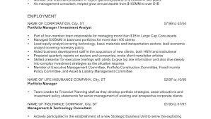Resume Examples Word Format Interesting Online Resume Format In Word ...