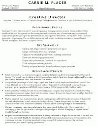 Vp Of Marketing Resume Samples. marketing resume template word .