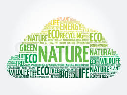 Word Of Nature Nature Word Cloud Conceptual Green Stock Vector Colourbox
