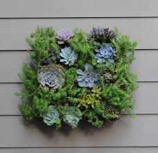 Bring your walls to life with the GroVert Living Wall Planter. Add color  and interest