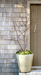Small Picture Best 25 Winter garden ideas on Pinterest Fall planting