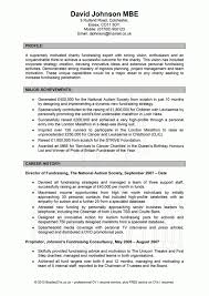 profile examples entry level this is a collection of five images profile summary resume examples