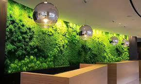 moss wall art with vines custom moss wall for hotel lobby