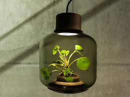 Lighting for houseplants Beginner Mygdal Plantlamp We Love Eames Design Plants Plants Indoors Self Inhabitat These Lamps Let You Grow Plants Anywhere Even In Windowless Rooms