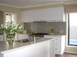 Painted Kitchen Cabinets White The Best Paint For Kitchen Cabinets Kitchens Cute How To Paint