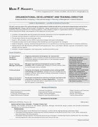 Federal Resume Template Interesting 60 Writing A Federal Resume Professional Best Resume Templates