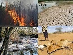 Resultado de imagen para El cambio climático y el poder de las corporaciones