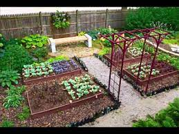 vegetable garden small backyard