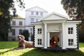 Dog House Image 07