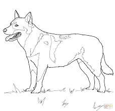 Boxer Dog Coloring Pages Boxer Dog Coloring Pages Dog Printable Dog
