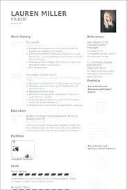 Resume Guidelines Impressive Best Resume Guide Best Resume Guide Tour Guide Resume Me Best