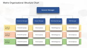 Org Chart With Multiple Managers 7 Types Of Organizational Chart Templates That You Can Steal