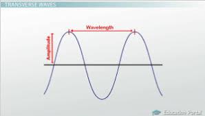transverse and longitudinal waves venn diagram transverse longitudinal waves definition examples
