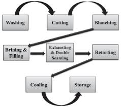 3 Process Flow Chart For Canning Of Vegetables Download