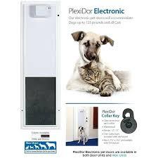 wall mounted pet doors performance electronic automatic wall mounted cat dog door large pet wall mounted pet doors