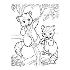 Small Picture 10 Funny Raccoon Coloring Pages Your Toddler Will Love To Color