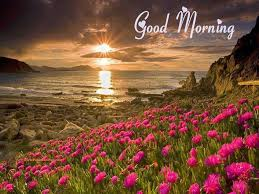 Good Morning Free Scenery Wallpapers ...