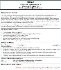 Ramp Agent Resume Resume Layout Com