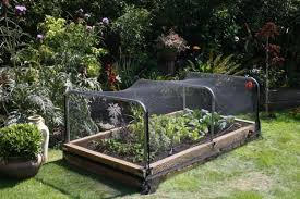 how to keep squirrels out of garden. Keep Squirrels Out Of Your Garden: Vegetable Garden With Raised Bed And Net How To