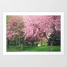 pink nature wall art home decor art