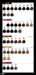 Loreal Dialight Color Chart Bedowntowndaytona Com