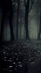 Free download Dark Forest HD Wallpaper ...