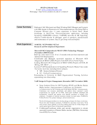 Resume Summary Examples For Students 100 resume summary statement examples how to make a cv 82