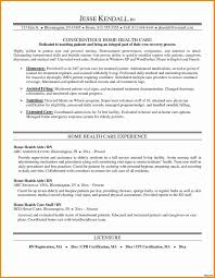 Home Health Care Business Lan Template Example Lans Ess Plan