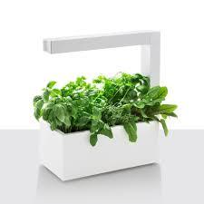 Herbie Indoor Herb Garden - White