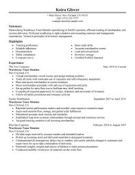 What A Resume Should Look Like Best Team Members Resume Example LiveCareer 88