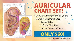 Auriculotherapy Chart Points The Ultimate Auriculotherapy Reference Card Acupuncture