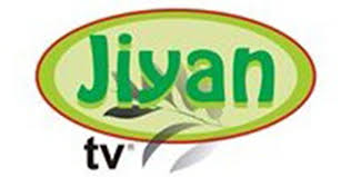 Image result for jiyan