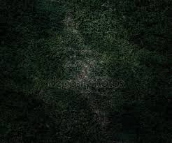 grass at night texture. Fine Texture Green Night Texture In Grass At