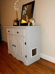 Image Bench Interior This Is Custom Built Cabinet For Your Cat This Cabinet Was Turned Litter Zeb And Haniya Interior Litter Box Furniture This Is Custom Built Cabinet For