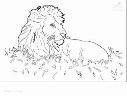 Leeuw Kleurplaat Fantastisch Kleurplaat Simson Leeuw Archidev