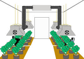 indoor gardening supplies. Learn To Design Hydroponic Systems Plant Nutrients Indoor Gardening Supplies