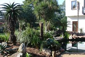 Small Picture Garden Ideas South Africa Landscaping Ornaments And Water Garden
