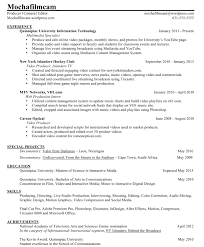 Sample Resume Gallery Assistant