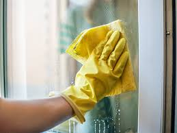 does vinegar kill mold and mildew what