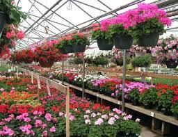 garden centers near me. garden shops near me store 2 publix . centers