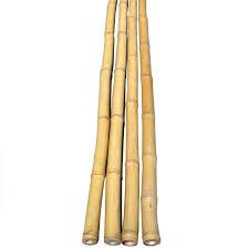natural bamboo poles 25
