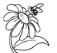 Small Picture 53 best Floral images on Pinterest Drawings Coloring books and