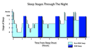Rem Sleep Chart The Five Stages Of Sleep Characteristics Of Non Rem Rem